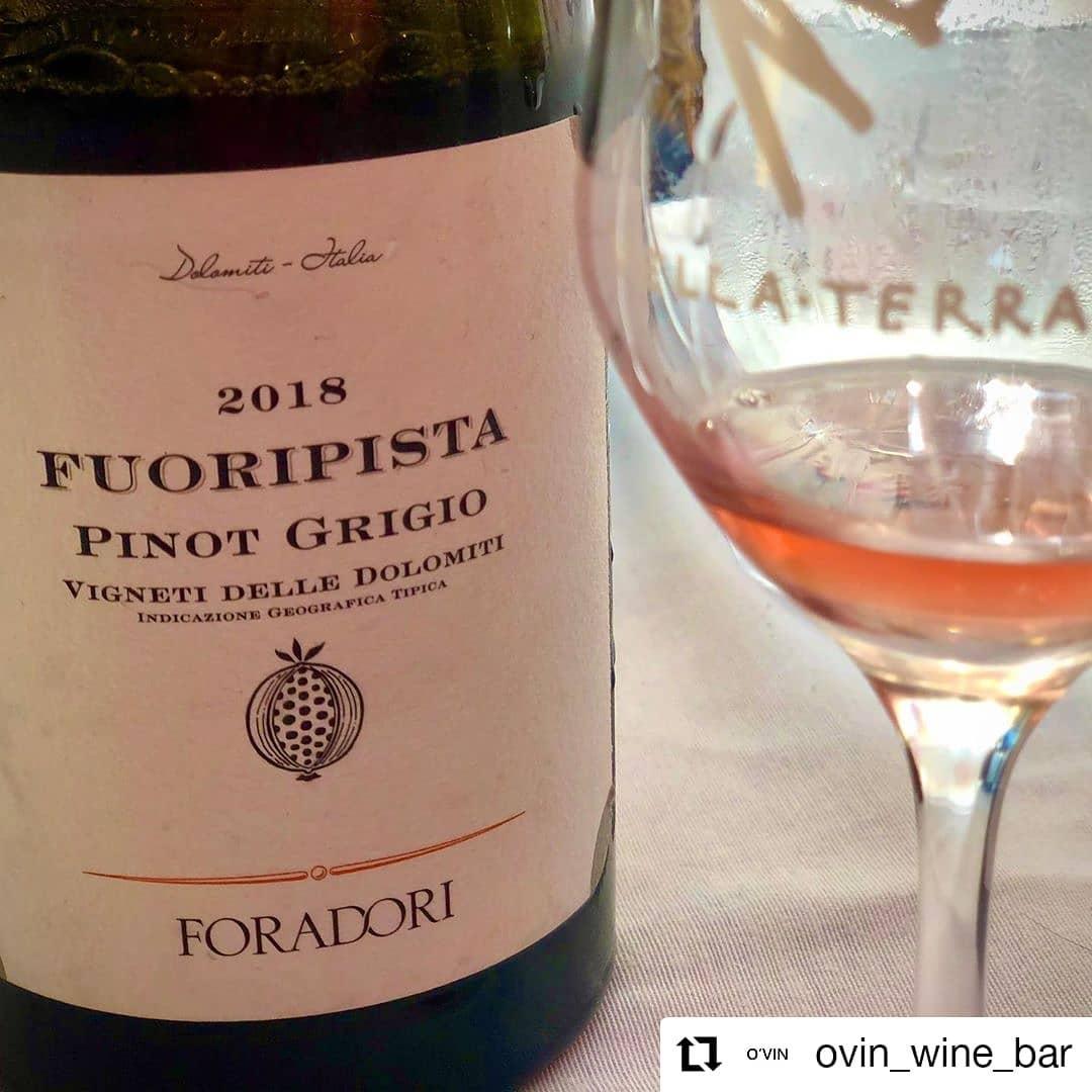 O VIN WINE BAR ANDORRA BEST PLACE TO DRINK WINES IN ANDORRA El Pinot Grigio como está: en el medio entre uva blanca y uva negra